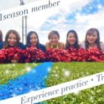 "<span class=""title"">Creators Cheerleaders 体験会&トライアウトのお知らせ</span>"